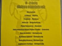 FS Grof Blagaj - Gostovanje v Budimpešti 2011 (39)