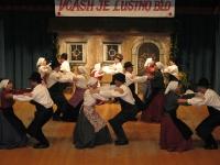 FS Grof Blagaj - Letni koncert 2008 (17)