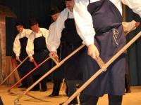 FS Grof Blagaj - Letni koncert 2010 (18)