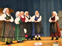 FS Grof Blagaj - Letni koncert 2010 (24)