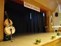 FS Grof Blagaj - Letni koncert 2013 (1)