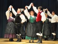 FS Grof Blagaj - Letni koncert 2013 (19)