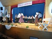 FS Grof Blagaj - Letni koncert 2013 (4)