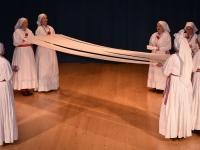 FS Grof Blagaj - Letni koncert 2017 (10)