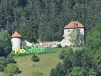 FS Grof Blagaj - Pivo in cvetje 2010 (2)